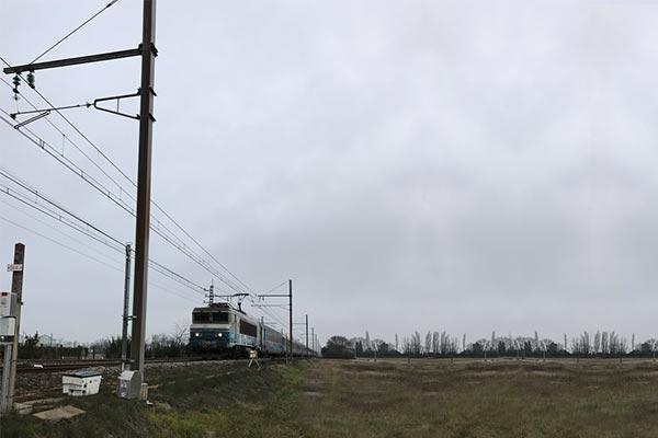 ferrovia-feeder-05